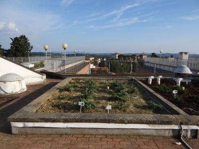 Roof Garden, Istituto Tecnico C. Cattaneo, San Minato